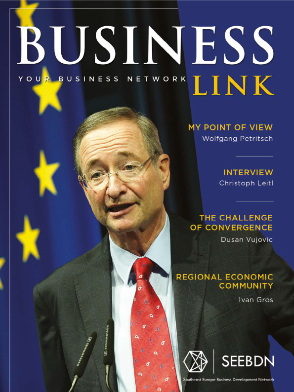 Business Link Magazine No1