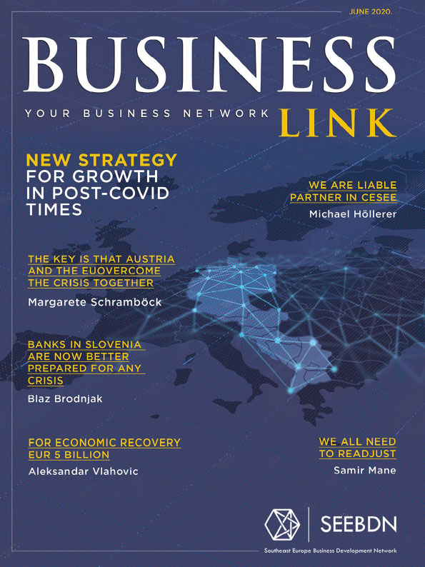 Business Link Magazine No5